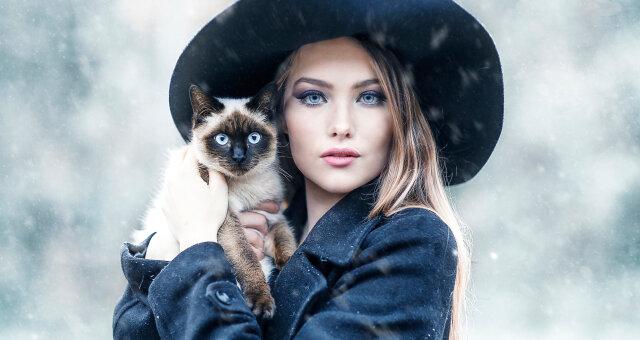 Знаки Зодиака и породы кошек