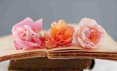 erotik books