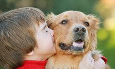Фахівець розповіла, які домашні тварини протипоказані дітям