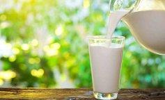 молоко, растительное молоко, польза растительного молока