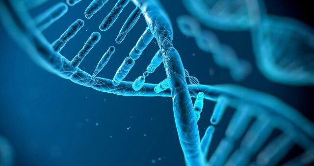 чому деякі люди у спадок передають більше мутацій