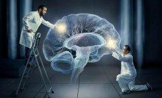 Ученым удалось сохранить мозг живым вне тела