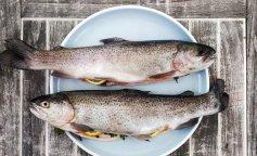 В Сети появилось фото уникальной рыбы с двумя ртами (ФОТО)