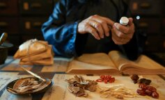 Ученые обнаружили старейший медицинский инструмент: фото