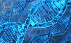 Это все гены: Что передается по наследству?