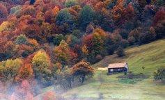 colors-of-autumn-carpathians-ukraine-3