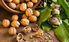 Продукт-рекордсмен: 5 корисних властивостей волоського горіха