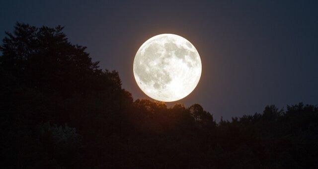 Полнолуние 7 мая: чем грозит Безумная Луна
