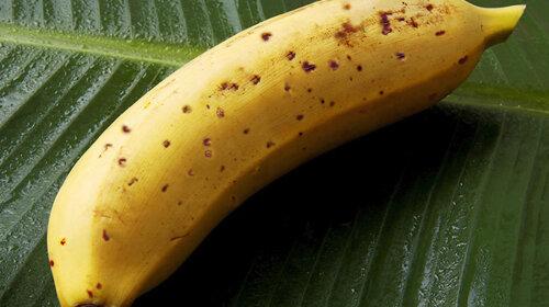 Британка купила банан с сотней тропических пауков внутри: фото