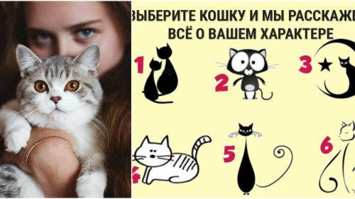Тест на характер: обрана кішка вкаже на твою ключову рису характеру