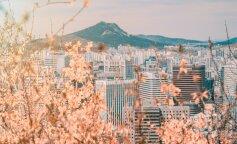 Південна Корея, сеул, тури, фото, бтс