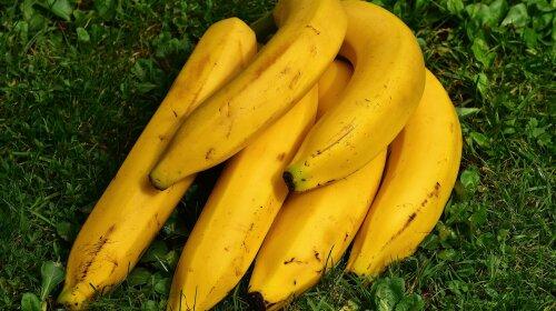 Назван фрукт, который необходимо есть каждый день