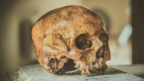 Вчені розповіли, що бачать люди після смерті