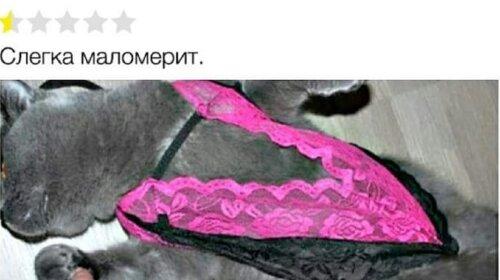 """""""Мне нужен пылесос, чтобы катать кота"""": самые смешные отзывы о товарах в Интернете (ФОТО)"""