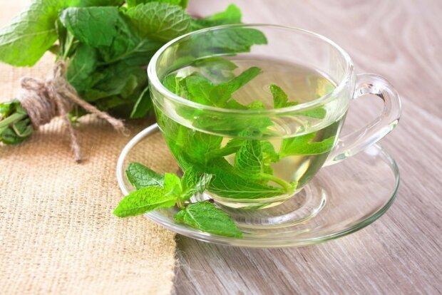Ученые назвали полезный чай, который улучшает память и концентрацию