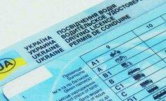 В Украине водители смогут ездить без прав: подробности нововведения