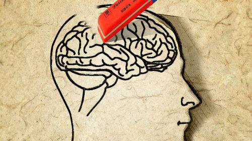 Мозок людини зменшується