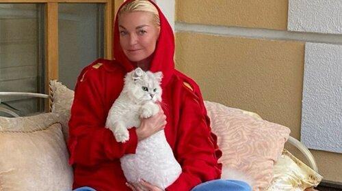 В піжамі і в пачці схопилася за електропилу: Анастасія Волочкова налякала шанувальників кадрами божевілля (ВІДЕО)