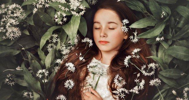 Комнатные цветы, которые лечат бессонницу