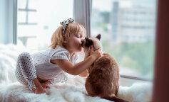Гипоаллергенные кошки: три породы кошек
