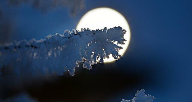 Луна 7-8 февраля: о чем предупреждает лунный календарь