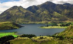 New Zealand_1