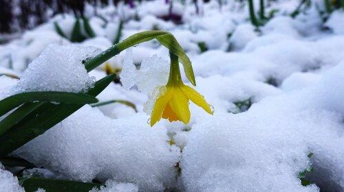 Погода в Украине: циклон Гизела принесет морозы в марте