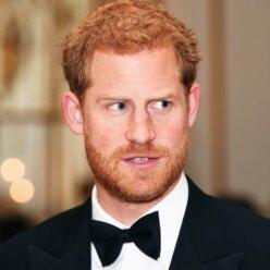 принц Гаррі, зміна іміджу, реакція шанувальників