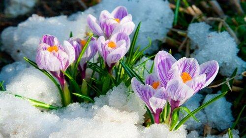 Будет ли в Украине потепление: синоптик дала точный прогноз погоды на 5 марта
