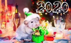 Новий рік 2020: новорічне меню в рік Пацюка