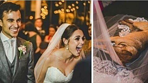 Беспризорный, промокший от дождя пес ворвался в церковь и сел на фату невесты. Ты только посмотри, что случилось дальше! (ФОТО)