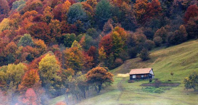 colors-of-autumn-carpathians-ukraine-3