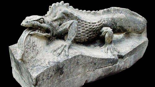 Печерна саламандра жодного разу не поворухнулася за 7 років