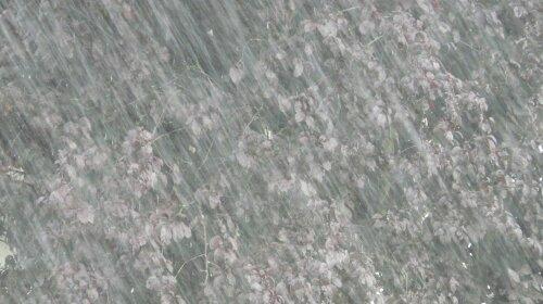 Проливные дожди и снижение температуры: прогноз погоды на 17 мая