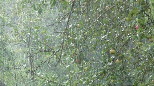Жара и грозовые дожди: прогноз погоды в Украине на 27 июля