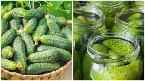 Завжди виходять хрусткими: Два перевірених рецепта засолювання огірків