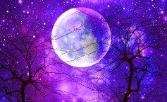 full-moon-1920-729100