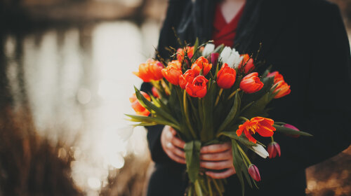 Bouquets_Tulips_Hands_507966