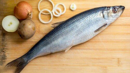Врачи назвали самый полезный вид рыбы для ежедневного рациона