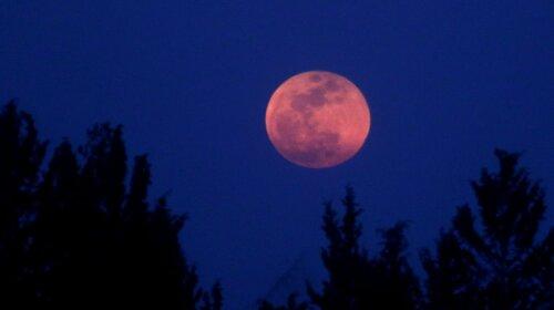 Супермісяць або просто рожевий місяць: у квітні 2020 українці побачать унікальне природне явище