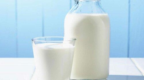 Ученые назвали самый опасный вид молочных продуктов