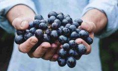 чем полезный виноград польза винограда