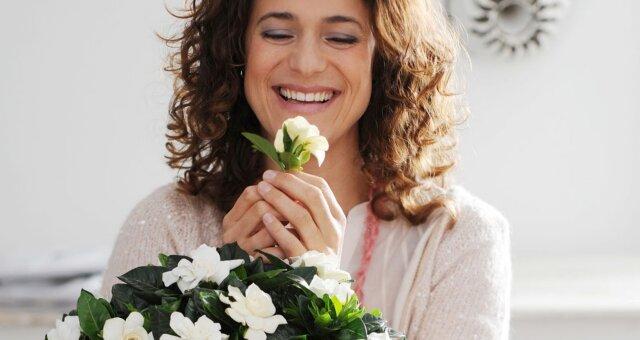 Комнатные цветы, которые привлекут любовь