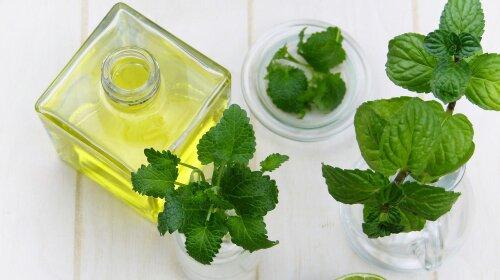 Ефірні олії антисептики для лікування застуди та ГРВІ