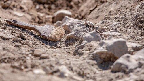 В Иране археологи обнаружили загадочную древнюю стену