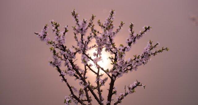 Ритуал на весеннее равноденствие «Помощь неба»
