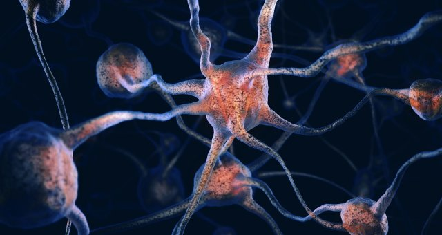 Conceptual 3D illustration of braincells, network of neurons, nervous system — iblalx04150780.