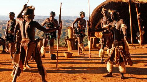 Ученые исследовали яд, которым мажут концы стрел аборигены
