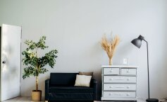 Пять источников пыли в вашем доме и как обезвредить их за 1 час