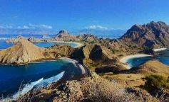 остров драконов, гигантские вараны, остров Комодо